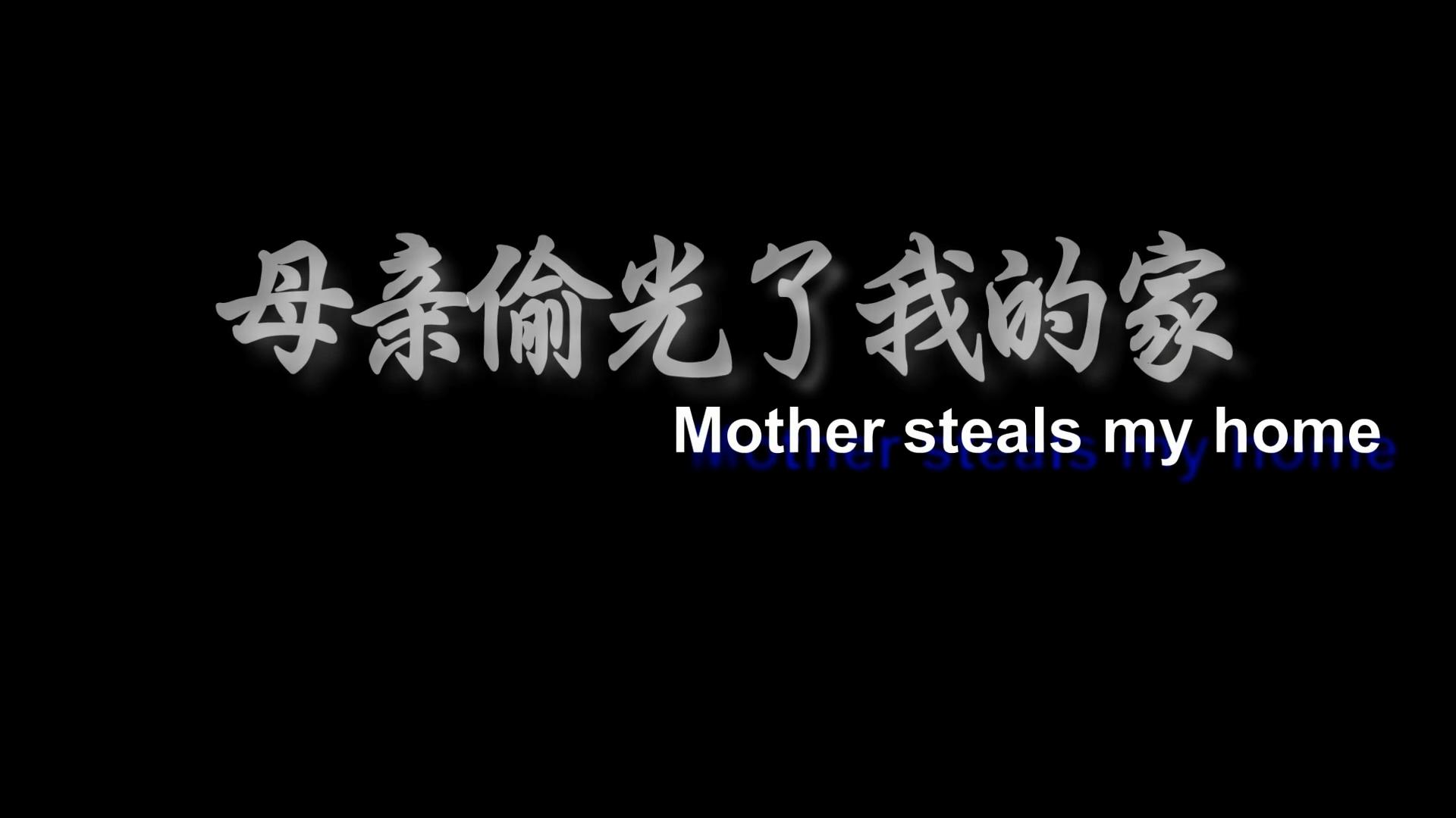 母亲偷光我的家